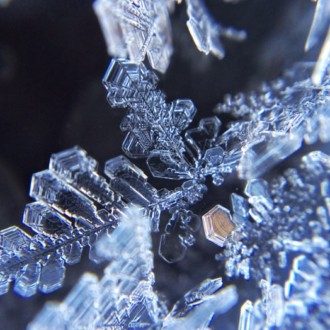 動画●霜の結晶×Dragon  Heart