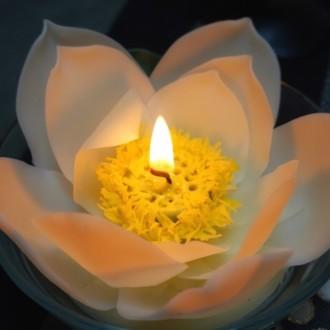 白い蓮の燈明と お盆
